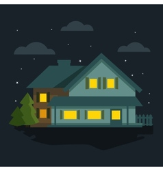 Night the house vector image