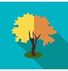 Fluffy autumn tree icon flat style vector