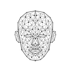 Human face low polygon wireframe mash head shape vector