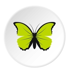 Little green butterfly icon flat style vector