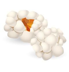 Pieces of popcorn vector