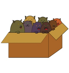 Cats in the box cartoon vector
