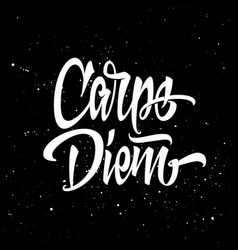 carpe diem for a t-shirt black and white vector image vector image