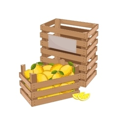 Wooden box full of lemon isolated vector