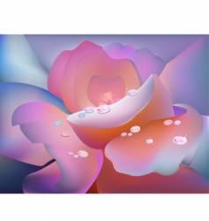 Rose petal vector