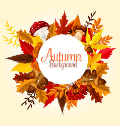 Autumn leaf mushroom and forest berry poster vector