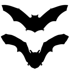 Bat silhouette on white background for halloween vector