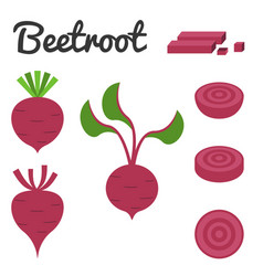 set of fruit and vegetable beetroot vector image vector image