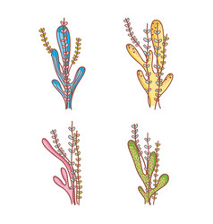 Set of seaweeds doodles vector