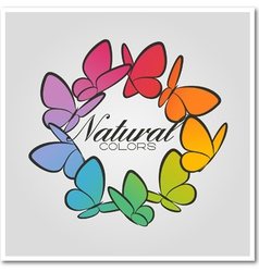 Multicolored butterflies vector