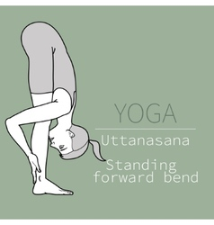Uttanasana standing forward bend vector