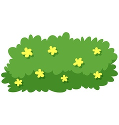 Bush with yellow flowers vector
