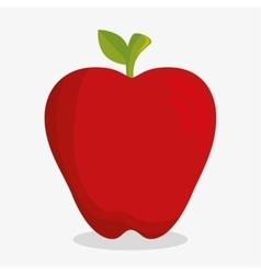 Delicious fresh fruit healthy icon vector