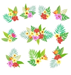 Beautiful floral jungle print with bouquet vector