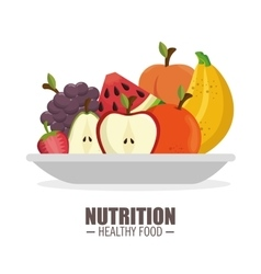 Harvest ripe frflatt nutrition healthy food design vector