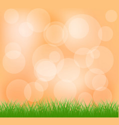 natural green grass and orange background vector image vector image
