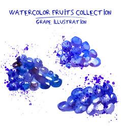 Set of watercolor grapes vector