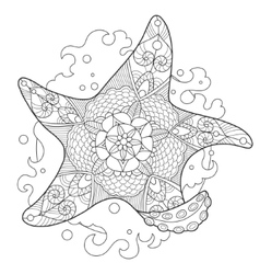 Starfish coloring book for adults vector