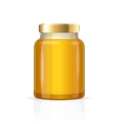 Glass jars bottles empty transparent honey vector