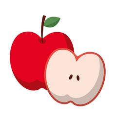 apple and half fruit natural food fresh vector image