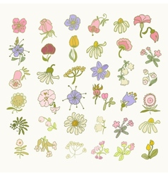 Collection of hand drawn flowers Elements for vector image vector image