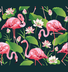 flamingo bird and tropic flowers background vector image