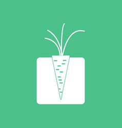 Icon turnips in the ground vector