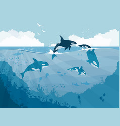 Silhouettes of underwater wildlife killer whales vector