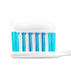 Tooth Brush Design vector image vector image