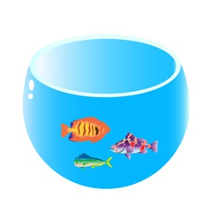 Home aquarium with three fish vector