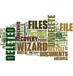 Emergency file recovery with undelete wizard text vector