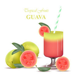 Smoothie guava exotic fruits cocktail vector