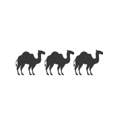 silhouette animal figure of camels flat icon vector image vector image