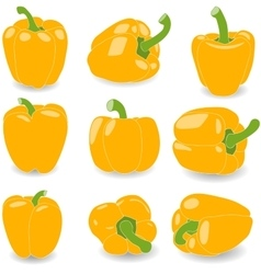 Pepper set of yellow peppers vector