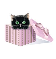 black kitten vector image vector image