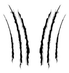 Grunge cat scratches10 vector