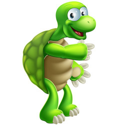 Cartoon tortoise or turtle pointing vector