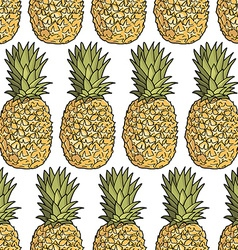 Pineapple pattern background vector