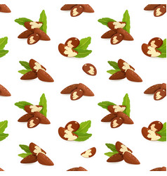 seamless texture with groups of brazil nuts on vector image