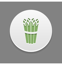 Asparagus icon vegetable vector