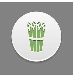 Asparagus icon vegetable vector