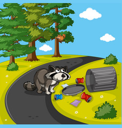 Racoon searching trash in park vector