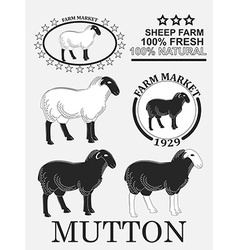 Set of premium lamb labels mutton badges and vector