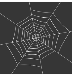 Spiderweb on a Black Background vector image vector image