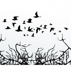 birds over wood vector image