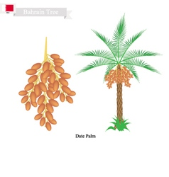 Date palm a national tree of bahrain vector
