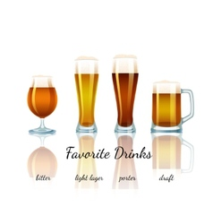 Favorite beer set isolated vector image vector image