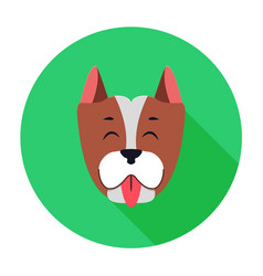 Funny muzzle of staffordshire terrier flat theme vector