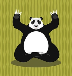 Panda meditating chinese bear on background of vector