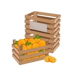 Wooden box full of orange isolated vector image vector image